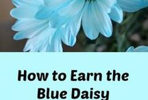 How to Earn the Daisy Girl Scout Blue Promise Center / Activities to help your Daisy troop earn the blue promise center.