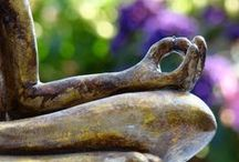 "Meditare /       ""The desire to know your own soul will end all other desires.""  Rumi"