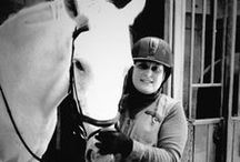 Horseback Riding / all things horses and horseback riding, and equine coaching