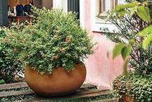 jardins...caminhos / by juliana veronica sehnem obenaus