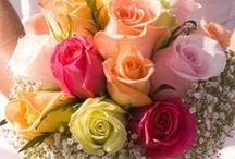 B ░❀❀❀ ᏰσʊQʊᏋƮs ❀❀❀░ / What Can Make A Girl Feel Special ? ❀Fresh βσuquet Of Flowers❀ Will .. Every Time !
