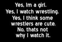 World Wrestling Entertainment.