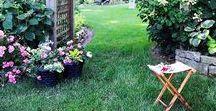 Garden / aranżacja ogrodu