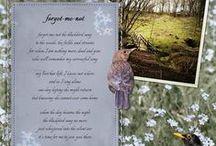 Poems / My poems
