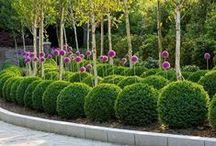záhrady a dvory