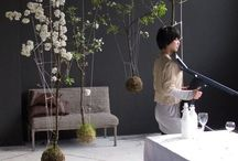 String garden - Kokedama