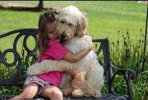 Amigos para siempre... / La amistad; Una joya imprescindible para la propia existencia del ser humano.