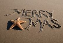 ~ Christmas Time ~
