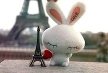 Paris: toujours ma passion