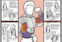 Exercise Diagrams