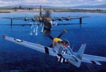 MilArt--Aviation