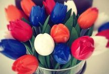 I Love Holland / www.hipenstipkaarten.nl