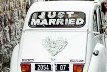 Love & Just Married