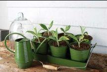 Virágtartók / Stílusos, öntöttvas és kerámia virágcserepek és tartók. http://kertesotthonbolt.hu/viragcserepek-viragtarto-allvanyok/