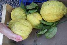 Citronát