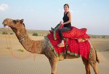 Pushkar Camel Fair / PUSHKAR - It's a Pacifying place that reminds of an exact Utopian land with Scintillating and Heavenly effect on you which fills you with extreme Kinetic power & Auspiciousness, at the same Replenishing with positive vibe that the place possesses.