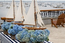 Nautical / Beach Party / Collection of nautical and beach party ideas