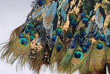 Peacock party inspiration