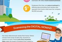 Tech/Digital Nomad - Migratory bird - World Traveller