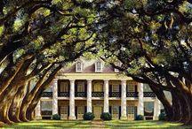 Oak Ally Plantation