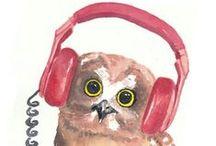Animal - Owl