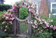 Gardening: Garden Gates