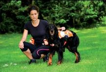 """Canisport / Discover our range """"Canisport"""" for dog and find the products on zolux.com"""