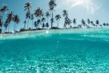 summah paradise