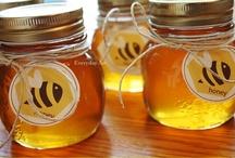 Bees/Honey / by Jami Williams