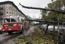 El huracán Sandy, en imágenes / La tormenta alteró planes de viaje en todo el mundo. Cientos de miles de evacuados en la costa este de EE.UU. Además hay cuantiosos daños, muerte y destrucción. Imágenes de AP. / by LAVOZcomar