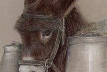 Donkey Love / Donkeys in life and art.