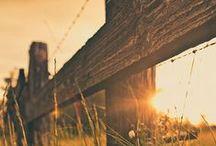 Country Livin' / by Jill Fluckiger
