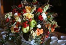 Thanksgiving Centerpieces / Get seasonal inspiration for Thanksgiving holiday decorating!