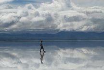 Reflections / by Lawanna Davis