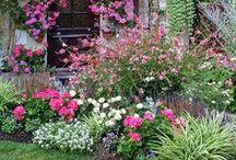 Garden Inspiration / by Phantom Screens