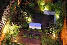 Backyard, Balcony and Plants