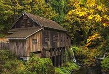 Autumn in the Pacific Northwest / Images from the Pacific Northwest of fall and the colors that come with the changing weather. All images look great printed, on canvas or metal. Check out my Gallery for more. http://1-mark-kiver.artistwebsites.com/art/all/all/all/colors+of+autumn