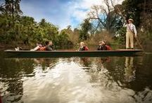 Punting on the Lake / Guided boat tours around the picturesque bays and islands of the Ornamental Lake in Melbourne's Royal Botanic Gardens. Enjoy a unique view of one of the world's most stunning botanic gardens from our elegant Edwardian punts.