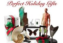 Holiday 2014 / The Evolution Store 2014 Holiday Gift Guide!