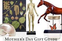 Mother's Day 2015 / Your Mom deserves the best! The Evolution Store has put together a selection of special treasures and unique gifts in honor of Mother's Day. Browse our selections below for Mother's Day gift ideas Mom will truly love!
