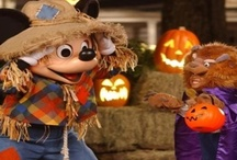 Family Friendly Halloween Parties in Orlando / For a family friendly Halloween in Orlando, Mickey's Not So Scary Halloween Party and SeaWorld's Spooktacular are the safer and saner Halloween celebrations at the theme parks!