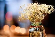 Flowers. / pretty.
