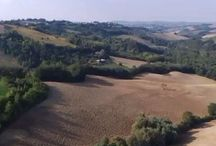Le Marche on video / Video's van Le Marche