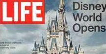 Walt Disney World / Hints and Travel Tips for Walt Disney Vacations!