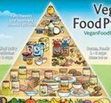 How do I go Vegan?