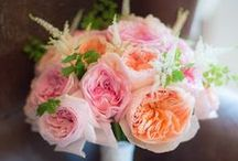 Our Favorite Florists / A wedding just isn't a wedding without gorgeous flowers!