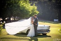 Our Favorite Videographers / Star in a movie about your big day.  These videographers will make it happen!