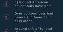 Pet Funeral Services / Pets are considered part of the family. The idea of giving them a proper funeral and burial comes natural with their passing. This need has eventually led to the rise in the funeral industry's pet death care services.