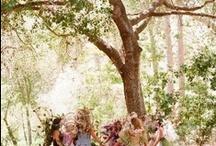 Fairies I want to meet