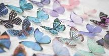 Butterfly Kaleidoscope / Did you know a collective of butterflies is sometimes called a kaleidoscope?! On this board I have pinned some images of my own silk butterflies with some gorgeous coloured images of work by some of my favourite artists!